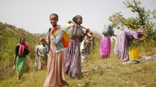 Forest landscape restoration in Northern Ethiopia