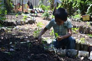 A student working in the Tzanchaj Garden