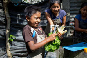 Students washing veggies