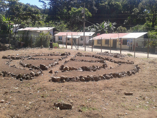 The beginnings of the garden