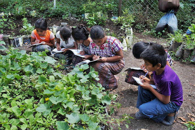 Garden class in one of our other partner schools