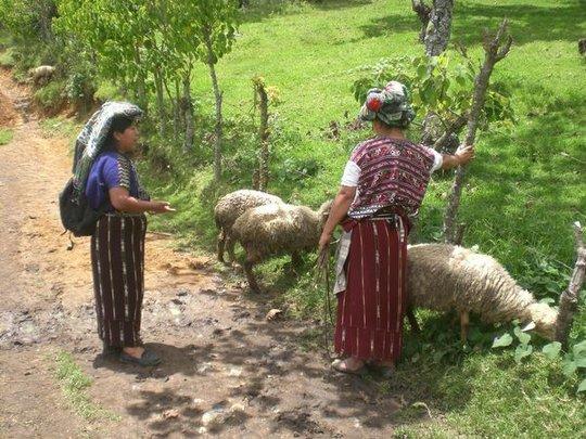 Discussing community funds in Chuché, Nebaj