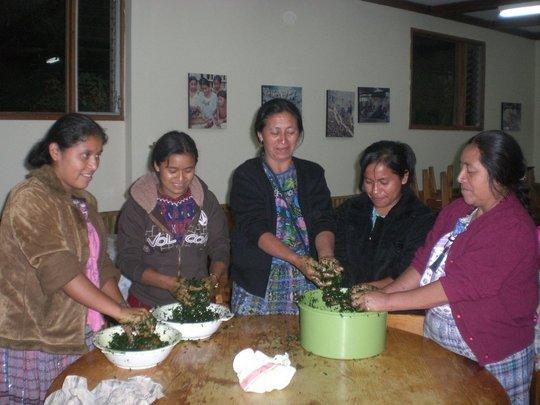 We offer workshops on health and nutrition