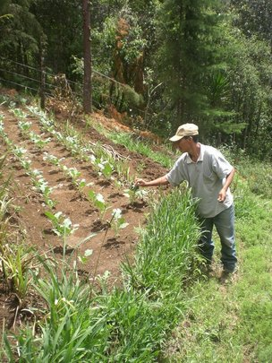 We teach sustainable agriculture techniques