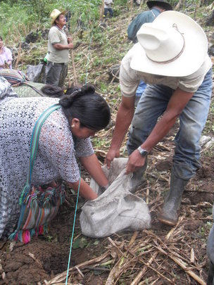 We train farmers how to use organic fertilizers