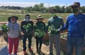 Immigrant & Refugee Food Security: Village Farm