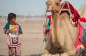 Camel Libraries - Girls Reading to Succeed