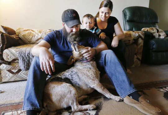 War Vets Heal With the Help of Shelter Dogs