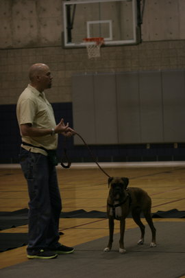 Trainer Shaun Woodard at Utah Valley University