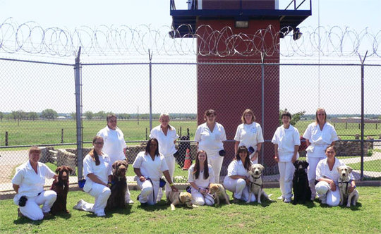Women inmates training dogs