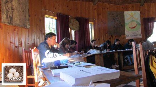 NESsT Business Plan Workshop