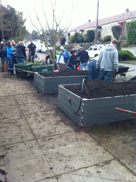 Volunteers Building Garden Boxes