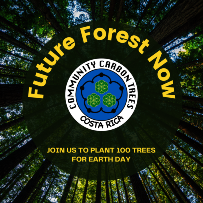 Future Forest Now: Plant 100 Trees for Earth Day