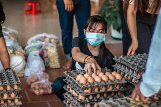 Dove volunteer repacking eggs