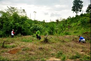 Former encroachers restoring the national park