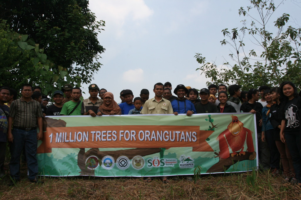 One million trees!
