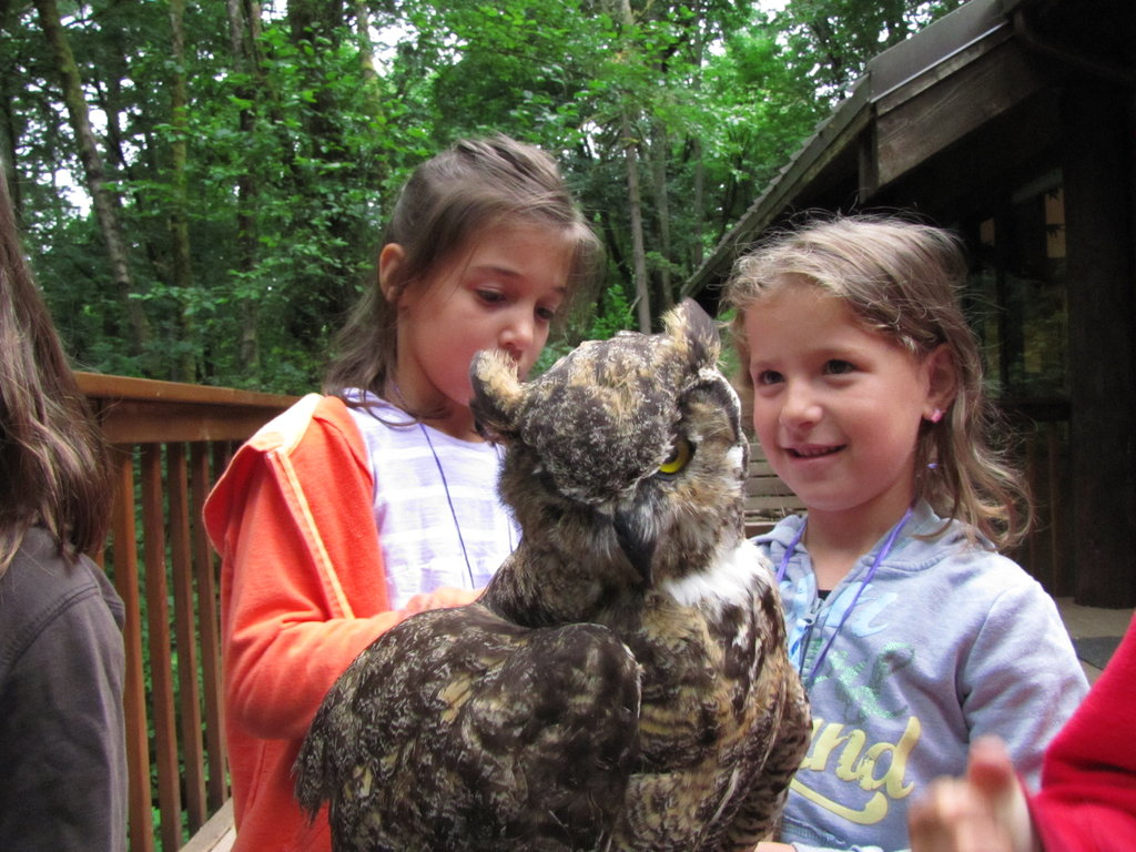 Day campers with owl