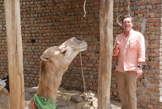 The author gets a bite from a local camel