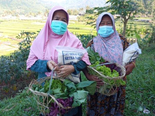 Free vegetable baskets for the elderly