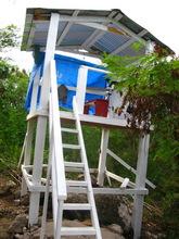 New hawk observation deck