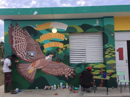 Beautiful wall painting of the Ridgway Hawk