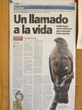 Publicity by Dominican Newspaper HOY