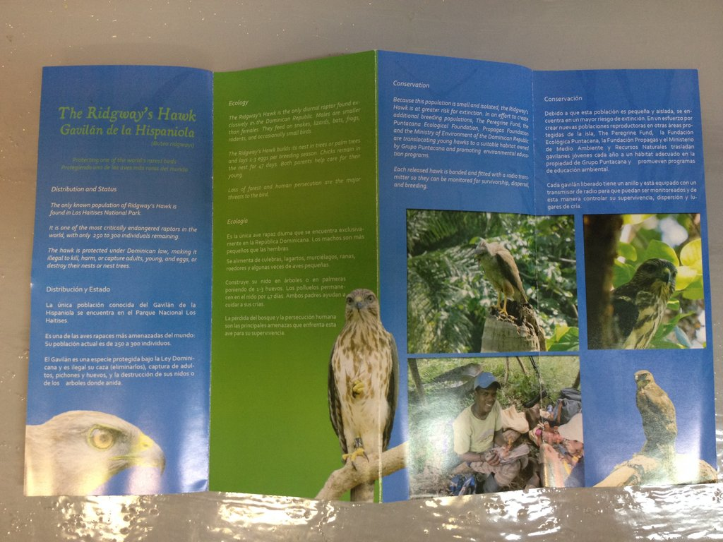 Inside of the new educational brochure