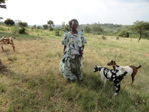 Ainembabazi with her goats