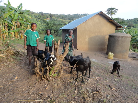Martha and the two grandsons with their goats