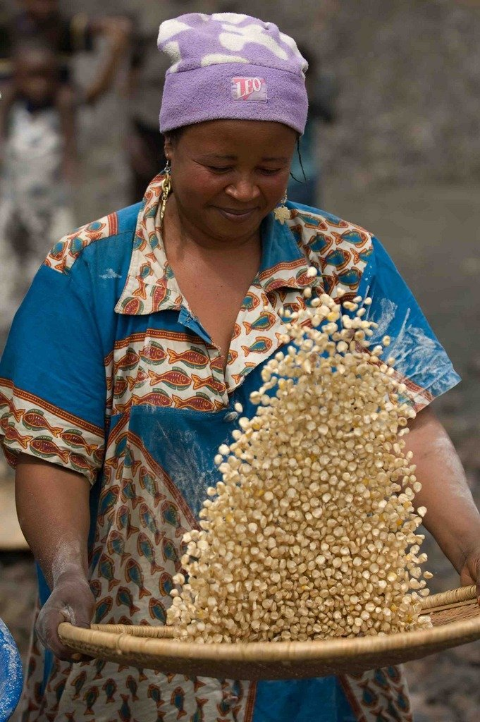 Agriculture Aid for War Affected Communities