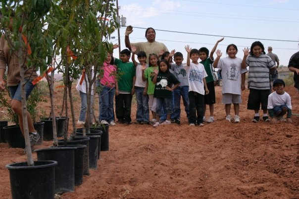Fruit Tree Planting Foundation