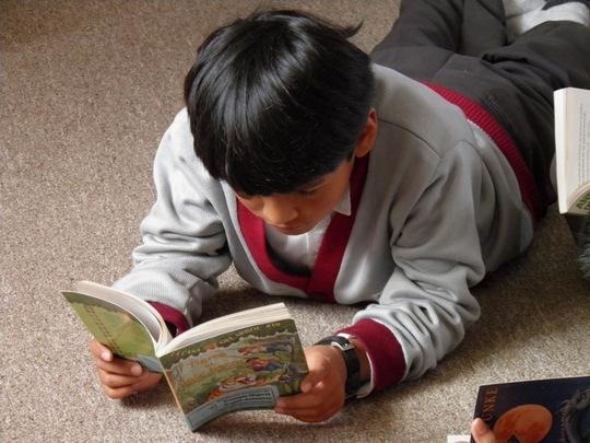 """Reading """"Magic Tree House""""!"""