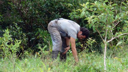 Eduardo Gomez, tree planter