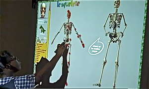A lesson on bones with the interactive white board