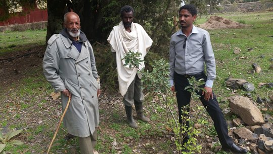 Amanuel Gebru with Ato Hailu and Ato Hailemariam