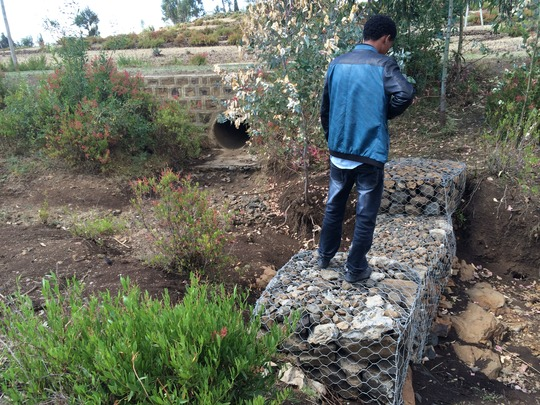 gabion wires bought by the project are installed