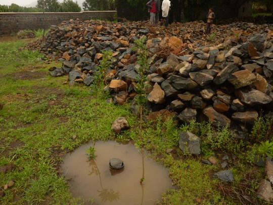 The rainy season has provided much need water