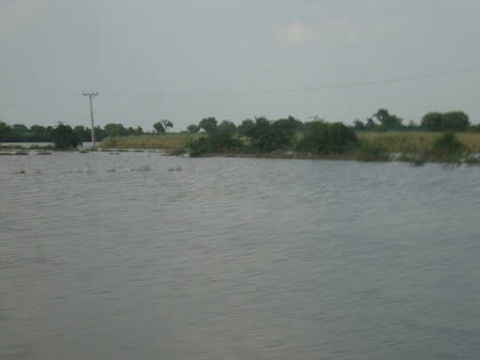 Migration by floods 2011 is more than 10.2 m
