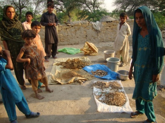 IDPs at household level making filters