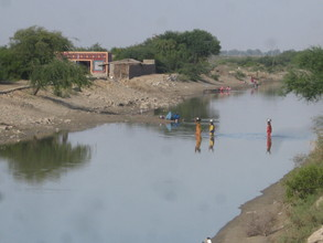 Drinking canal water