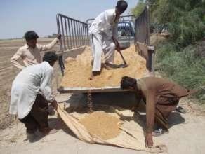 Unloading Sand for Nadi filter making