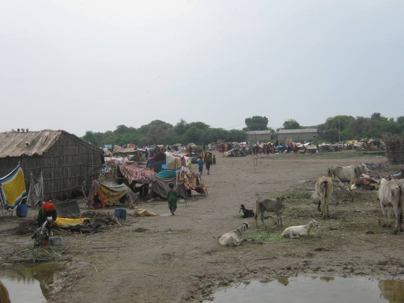 No Shelter available IDPs living in poor