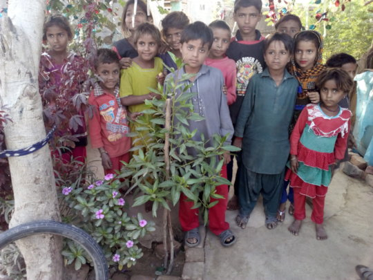 Children happy to plant tree