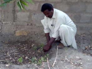 AHD staff during demonstration tree planting