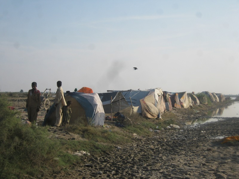 temporary houses in Sujawal & Jati area