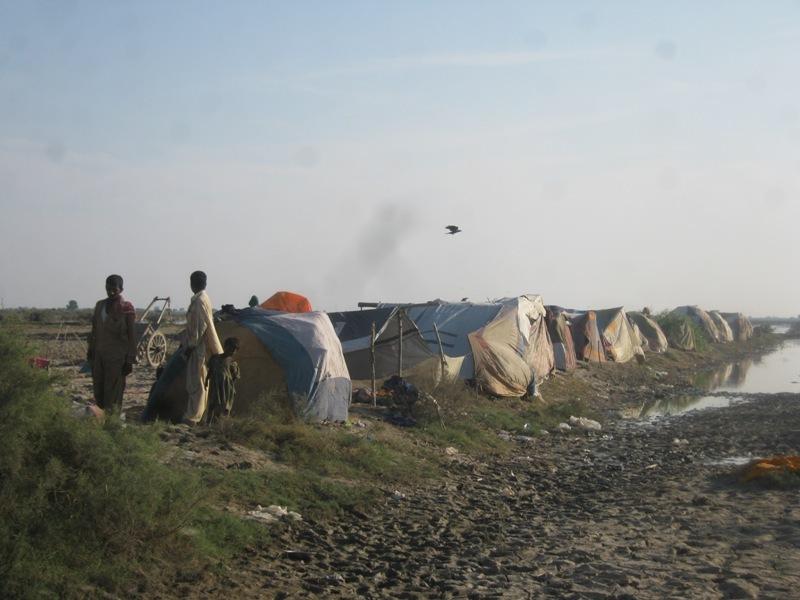 temporary houses in Sujawal & Jati area