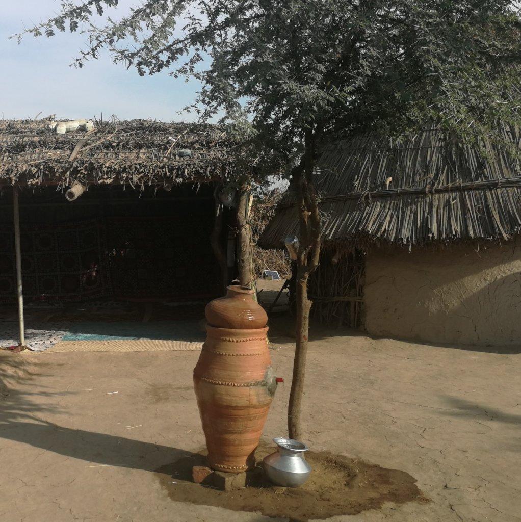 Nadi filter placed under tree