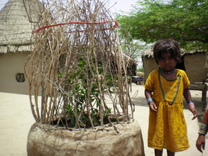 Young Girl planted tree at her house
