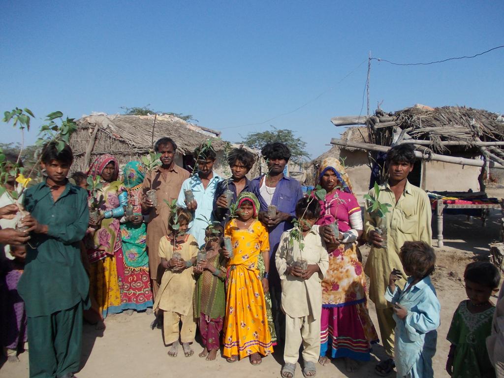 Tree Plantation at Chotho Kolhi Village