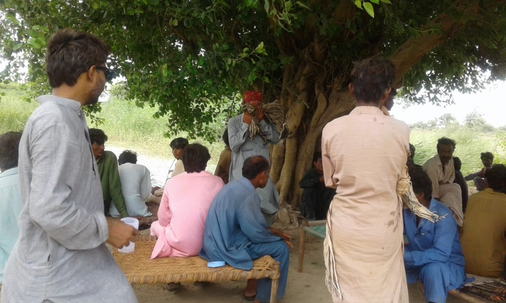 Trees play role in Providing shelter